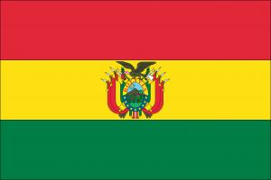 Autokennzeichen in Bolivien tragen die Landesflagge.