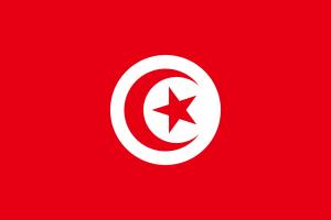 Bei den Autokennzeichen in Tunesien nutzt man auf den Fahrzeugen des Militärs die Landesflagge.