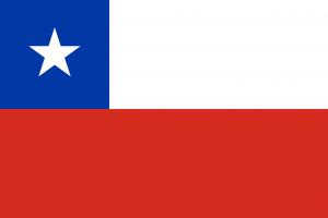 Bei den Autokennzeichen in Chile befindet sich das Staatswappen nach dem ersten oder dem zweiten Paar von Buchstaben bzw. Ziffern.