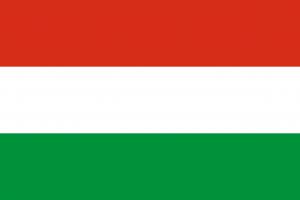 Auf den Autokennzeichen in Ungarn befindet sich der Einführung der EU-Kennzeichen 2004 keine ungarische Flagge mehr.