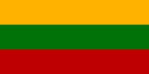 Die Autokennzeichen in Litauen ermöglichen keine genauen Rückschlüsse auf die Herkunft des Autos.