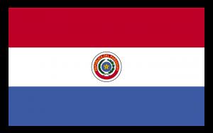 Autokennzeichen in Paraguay tragen die Landesflagge.