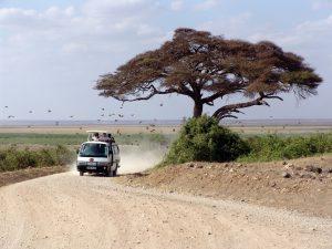 Autokennzeichen in Kenia beginnen mit einem K, gefolgt von 2 weiteren Buchstaben, 3 Ziffern und einem abschließendem Buchstaben.