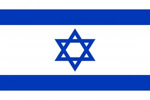 Die Autokennzeichen in Israel tragen die Landesflagge.