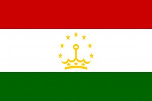 Die Autokennzeichen in Taschikstan tragen die Landesflagge.