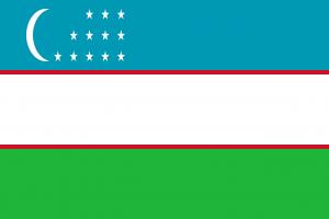 Die Autokennzeichen in Usbekistan tragen die Landesflagge in einem separatem Feld rechts.
